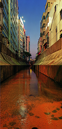 Naoya Hatakeyama. River Series #4. 1993. Chromogenic colour print. Collection de la Maison Européenne de la Photographie, Paris. Donation de la société Dai Nippon Printing Co. Ltd. Tokyo, Japon