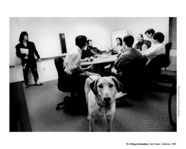 A Dog of Autodesk. San Rafael, California, 1995