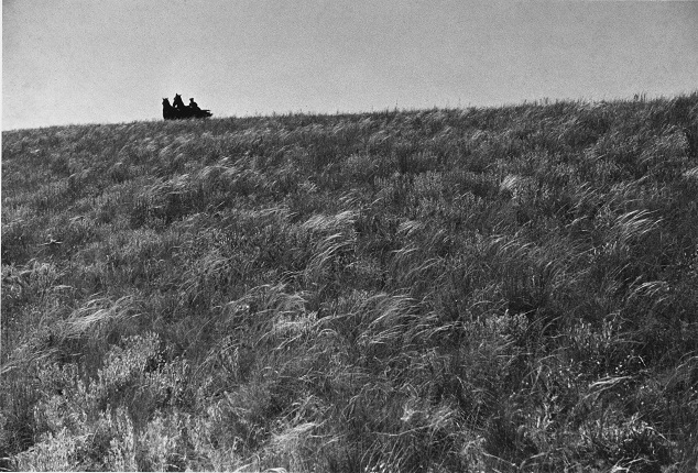 "Mikhail Prehner. In the steppe. For the book ""The First Horse"". 1935.