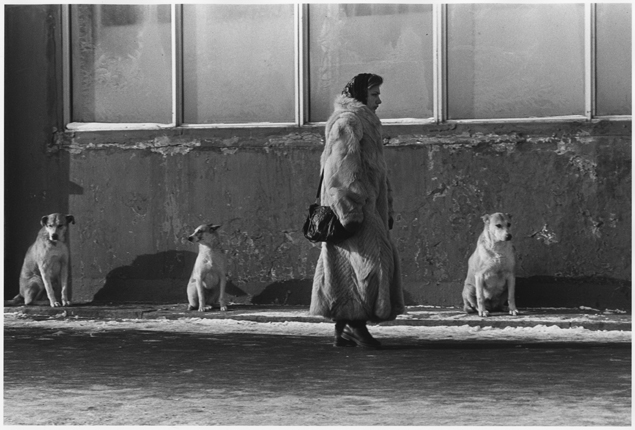 Vladimir Bogdanov. The fur coat made in China. Moscow, 1993 Multimedia Art Museum, Moscow