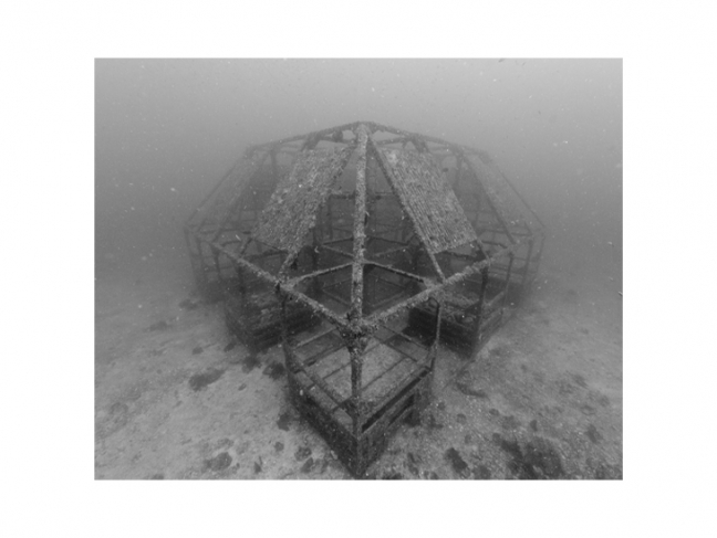 Nicolas Floc'h. Artificial reef, –19 m. From the 'Productive Structures' series, Hatsushima island, Japan,