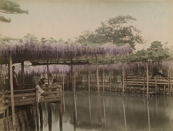 Tamamura Kozaburo (?).
